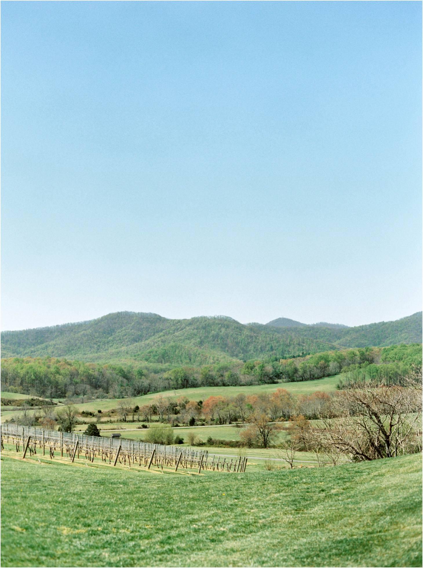 Kim Stockwell Photography Fine Art Film Wedding Richmond Virginia Pippin Hill Winery Charlottesville Va_0683